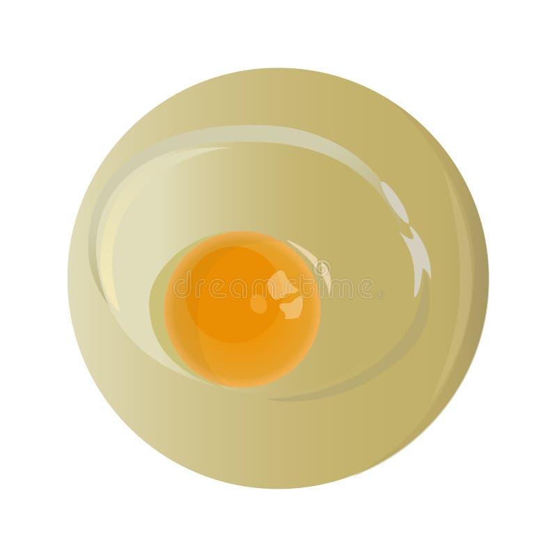 Huevo crudo del pollo stock de ilustración