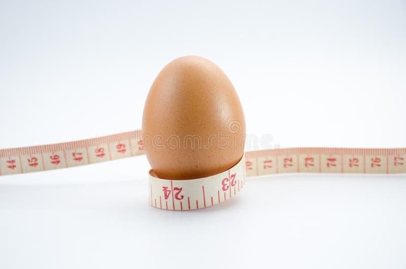 Huevo de dieta fotos de archivo