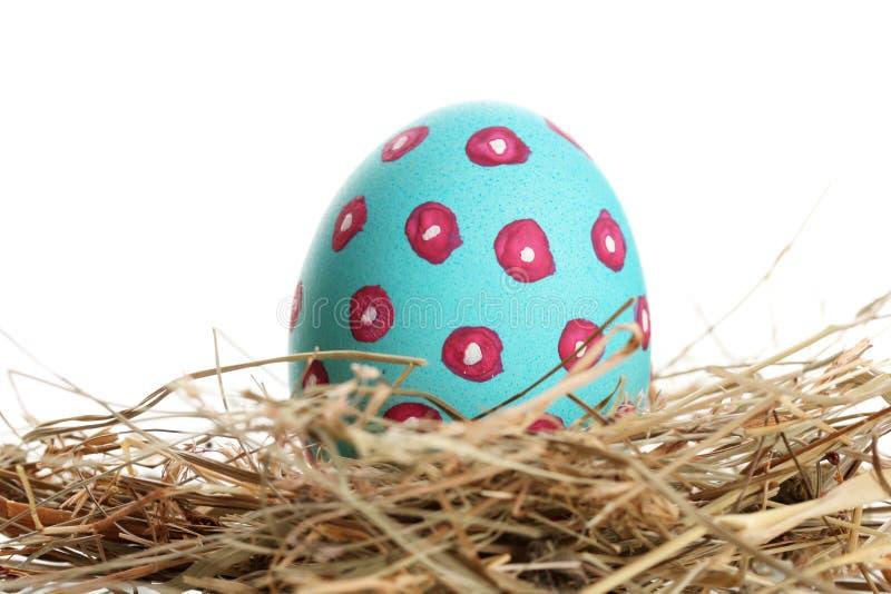 Huevo de Pascua azul en pequeña jerarquía del pájaro imagen de archivo libre de regalías