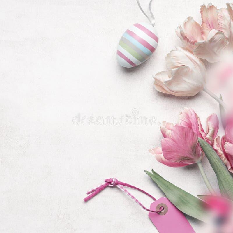 Huevo de Pascua del fondo de Pascua, flores de los tulipanes y etiqueta rosada en el fondo blanco, visión superior, endecha plana fotografía de archivo libre de regalías