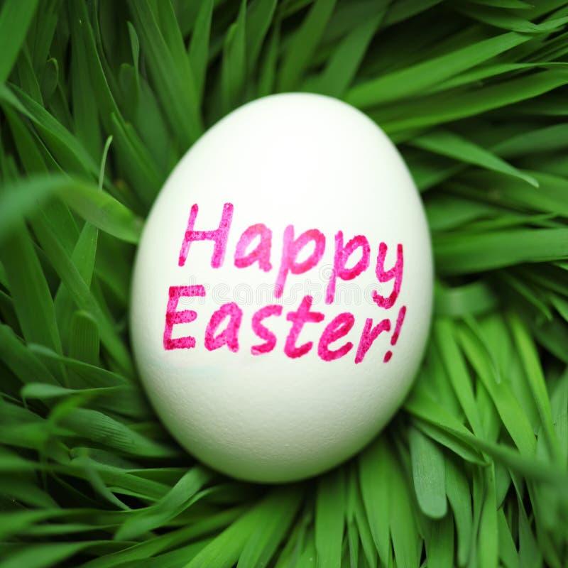 Huevo de Pascua feliz ocultado en hierba imagen de archivo libre de regalías