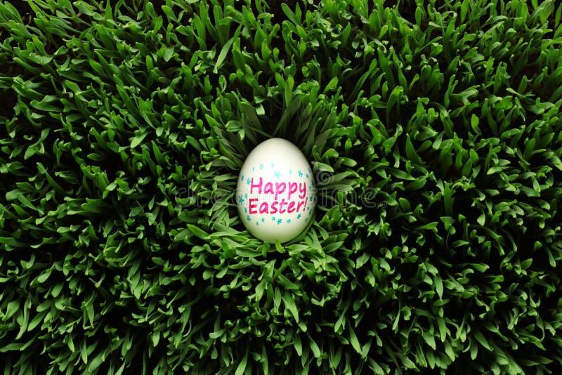 Huevo de Pascua feliz ocultado en hierba imágenes de archivo libres de regalías