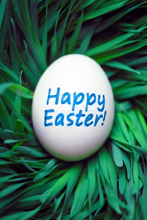 Huevo de Pascua feliz ocultado en hierba foto de archivo