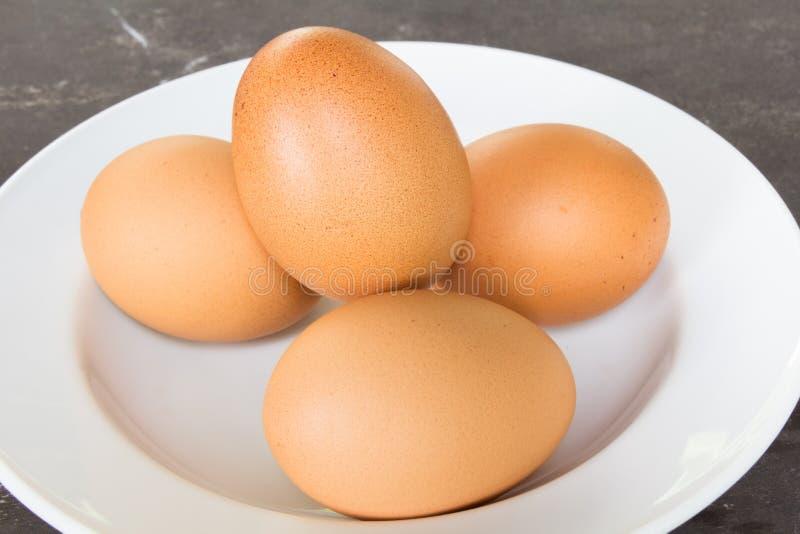 Huevo en plato foto de archivo