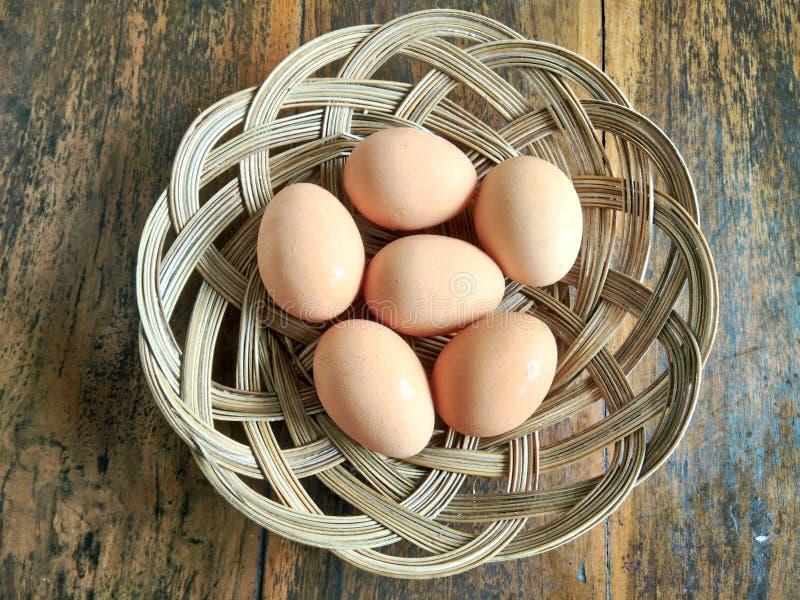 Huevo en tejido fotos de archivo