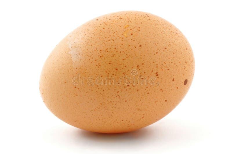 Huevo Free-range en blanco foto de archivo