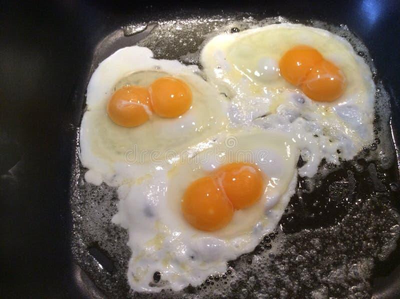 Huevo gemelo foto de archivo