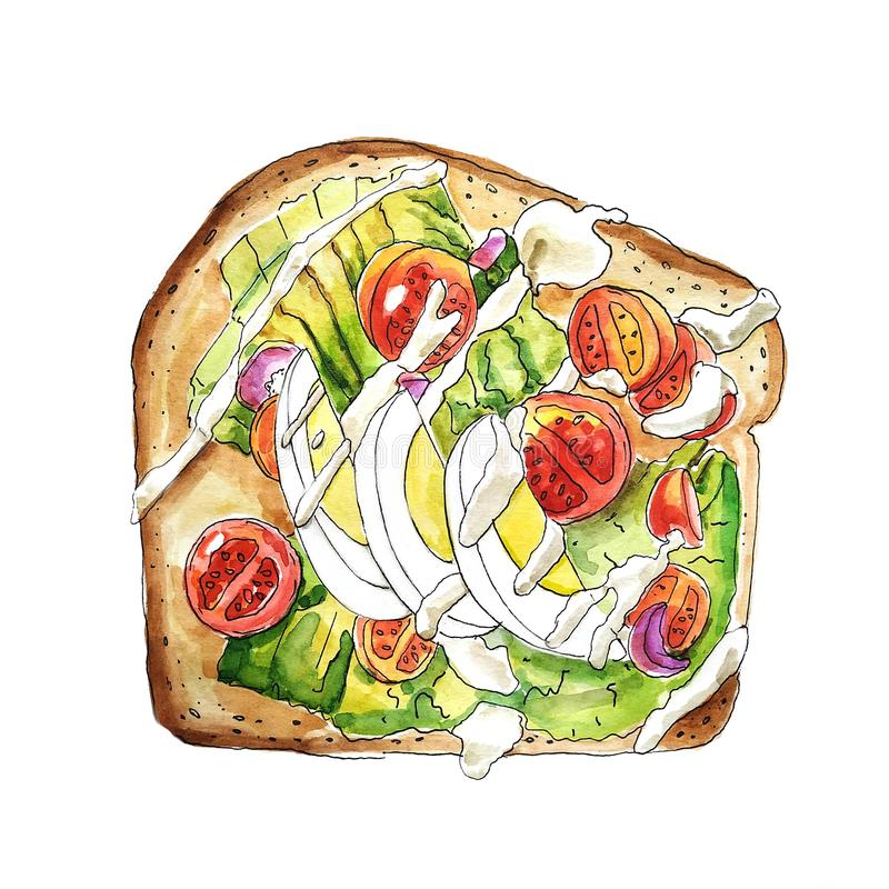 Huevo, queso y ejemplo vegetal del bocadillo watercolor Aislado en el fondo blanco ilustración del vector
