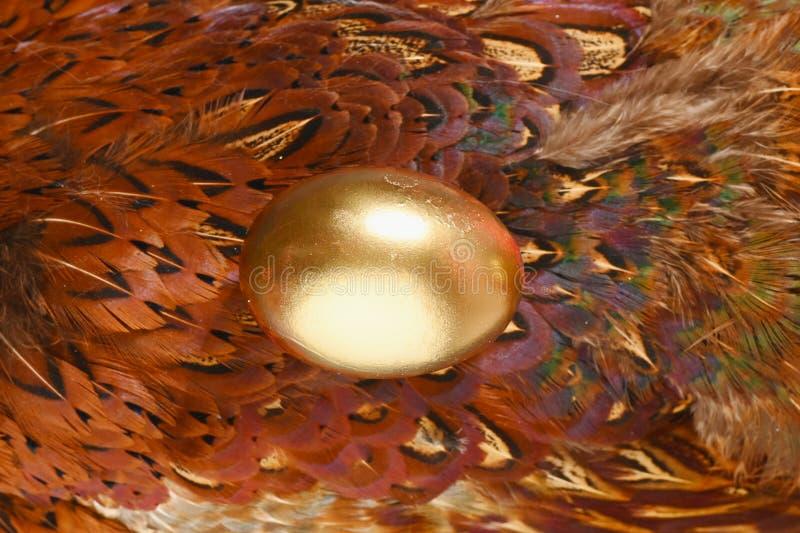 Huevo teñido del oro en fondo de las plumas del faisán Montante de Boho Huevos adornados para Pascua imagenes de archivo