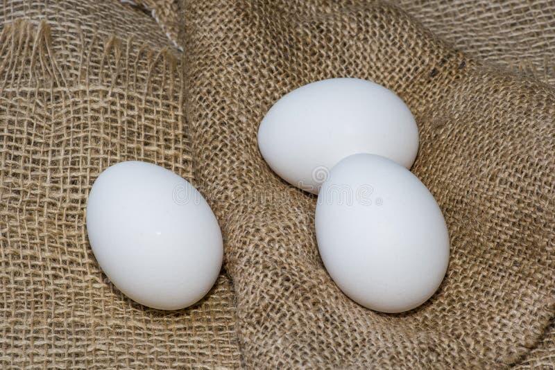 Huevos blancos de gallina envueltos en burlap al lado de una canasta Huevos blancos sobre fondo de burún imagen de archivo