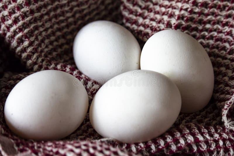 Huevos blancos en la toalla de cocina en la cocina imagen de archivo libre de regalías