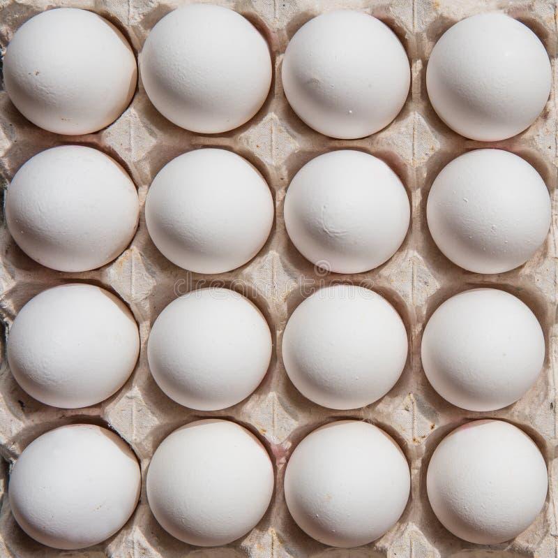 Huevos blancos en una opinión superior de la caja fotos de archivo