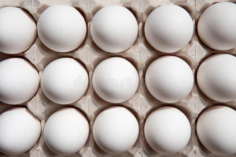 Huevos blancos en una opinión superior de la caja imagen de archivo