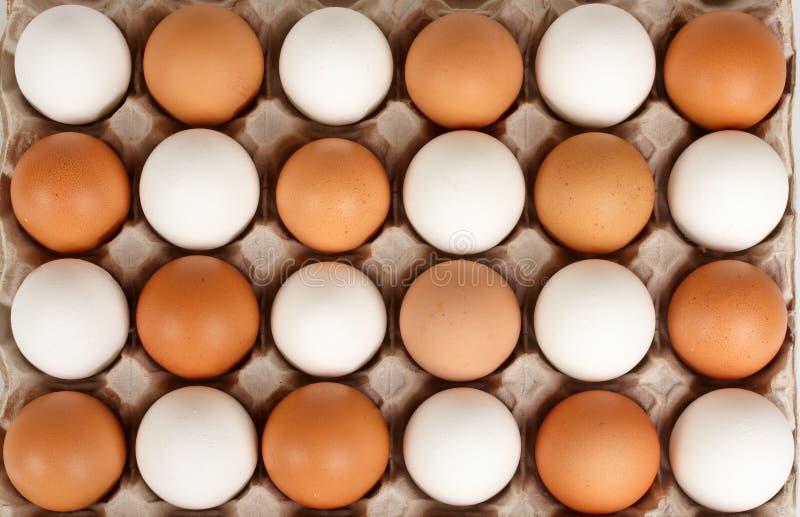 Huevos blancos y marrones en orden escalonada imagenes de archivo