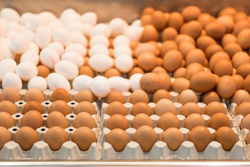 Huevos blancos y marrones en un mercado foto de archivo