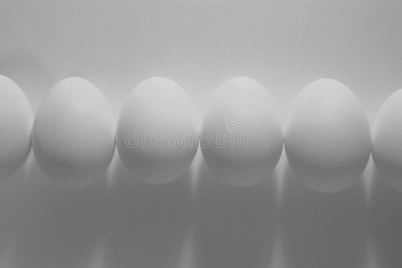 Huevos blancos y negros foto de archivo libre de regalías