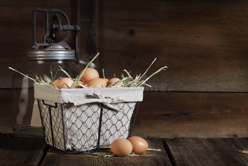 Huevos de Brown en cesta de alambre imágenes de archivo libres de regalías
