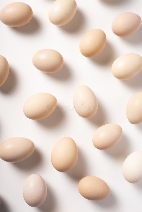Huevos de Brown en el fondo blanco fotografía de archivo