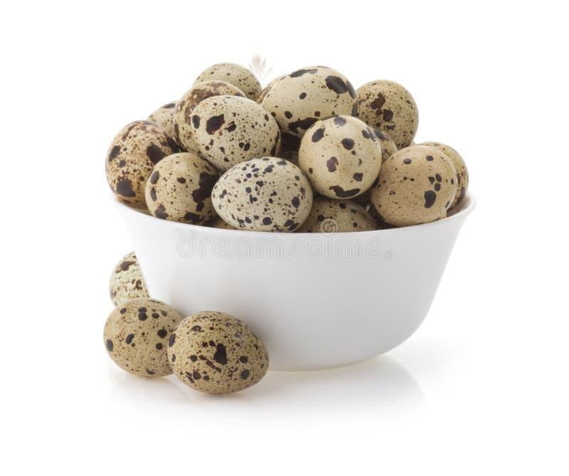 Huevos de codornices en blanco foto de archivo libre de regalías