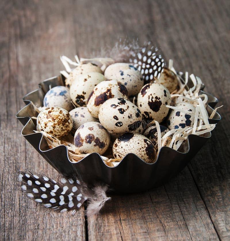 Huevos de codornices en un cuenco del metal fotografía de archivo libre de regalías