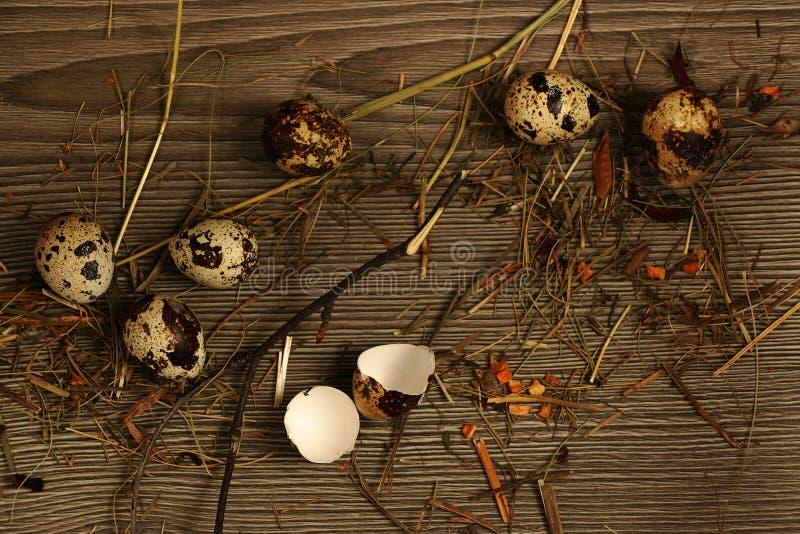 Huevos de codornices en un de madera imagenes de archivo