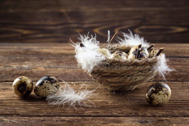 Huevos de codornices en una jerarquía imágenes de archivo libres de regalías