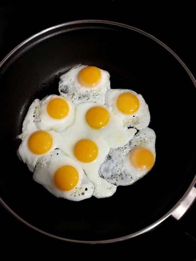 Huevos de codornices fritos en una cacerola imagen de archivo libre de regalías