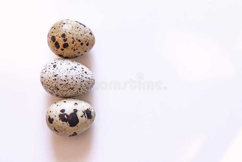 Huevos de codornices Grupo de huevos de codornices aislados en el fondo blanco Cl imágenes de archivo libres de regalías