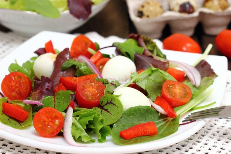 Huevos de la ensalada y de codornices de las verduras frescas foto de archivo