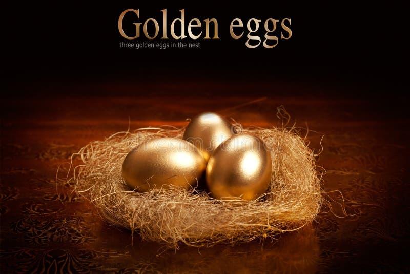 Huevos de oro foto de archivo