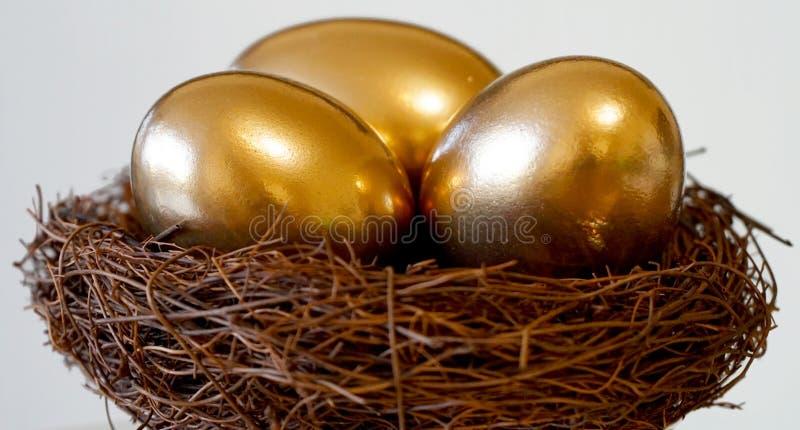 Huevos de oro en jerarquía foto de archivo