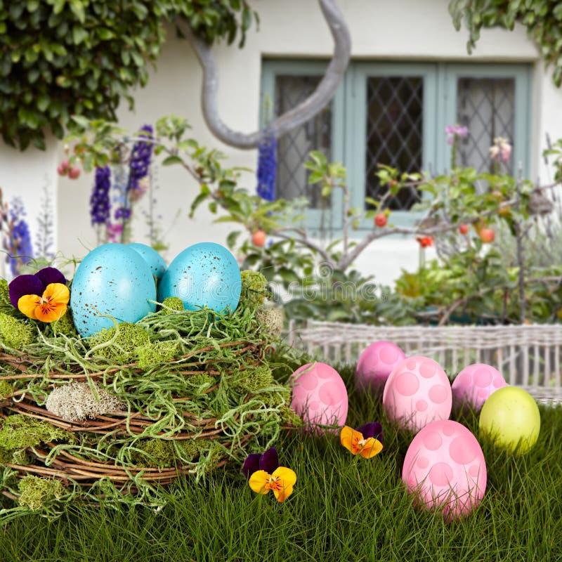 Huevos de Pascua azules de los petirrojos en la jerarquía del pájaro, hierba verde fotografía de archivo