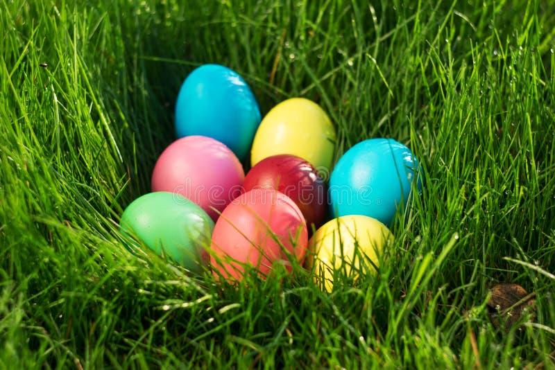 Huevos de Pascua coloreados en hierba verde fotos de archivo