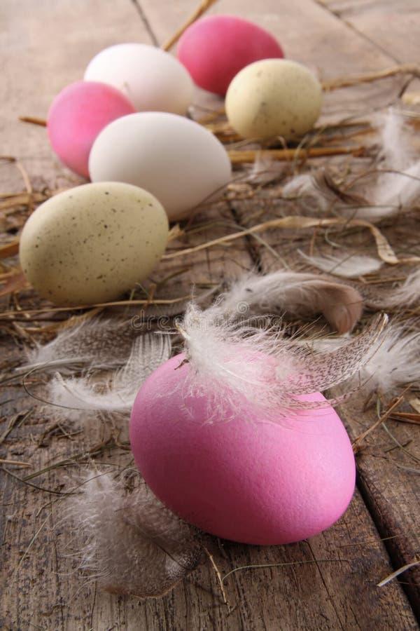 Huevos de Pascua coloridos con las plumas en el vector viejo foto de archivo