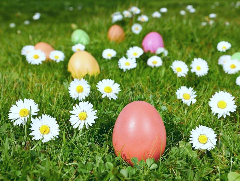 Huevos de Pascua coloridos en un campo fotografía de archivo libre de regalías