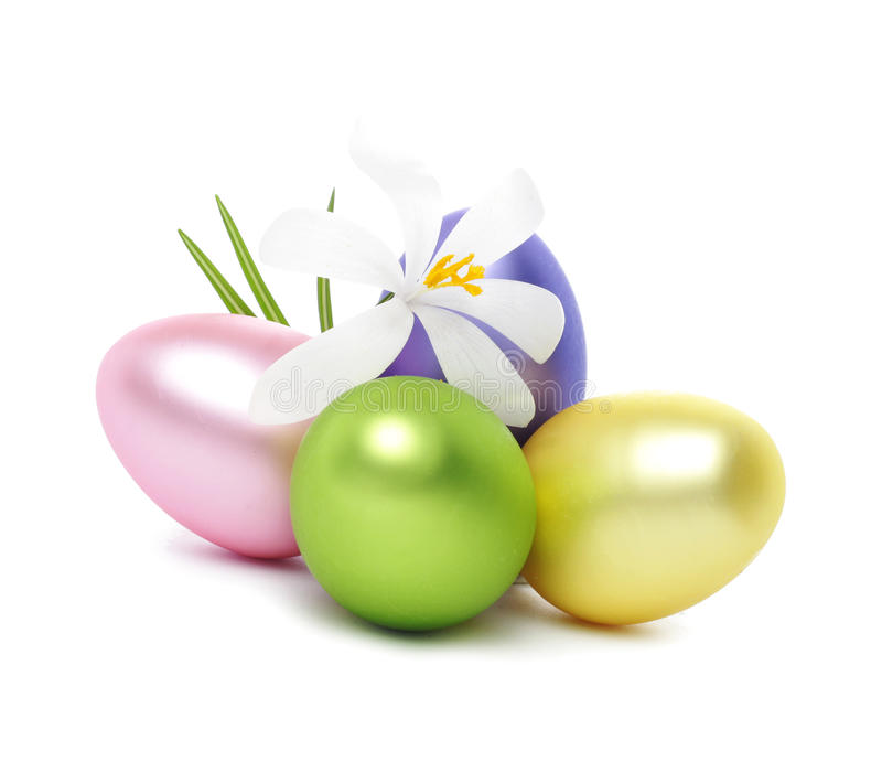 Huevos de Pascua con las flores del azafrán fotos de archivo