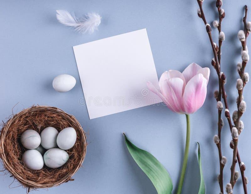 Huevos de Pascua en flores de la jerarquía y del tulipán en fondo de la primavera Visión superior con el espacio de la copia Tarj fotos de archivo libres de regalías