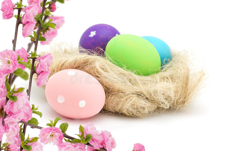 Huevos de Pascua en las flores de la jerarquía y de la almendra aisladas en blanco fotografía de archivo libre de regalías