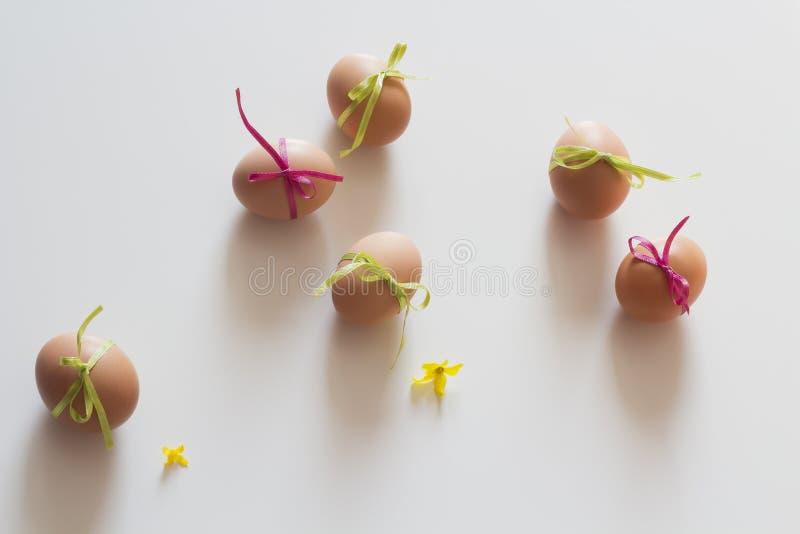 Huevos de Pascua felices en el fondo blanco imagenes de archivo