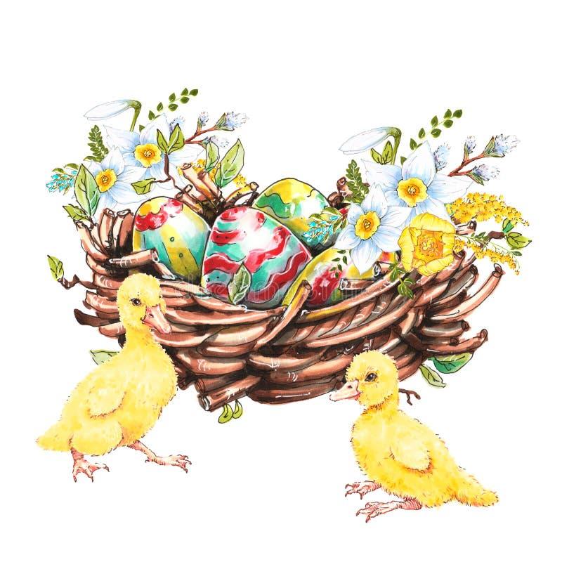 Huevos de Pascua multicolores en una cesta con las flores y los anadones lindos, dibujo de la mano ilustración del vector