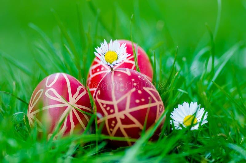 Huevos de Pascua, ¡s del tojà de Húsvéti fotos de archivo libres de regalías