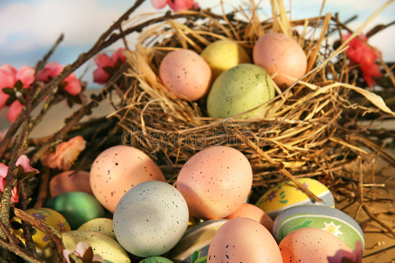 Huevos de Pascua y flores de la manzana fotografía de archivo libre de regalías