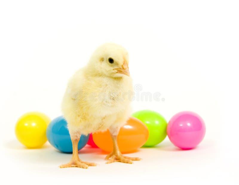 Huevos de Pascua y pollo del bebé imagen de archivo