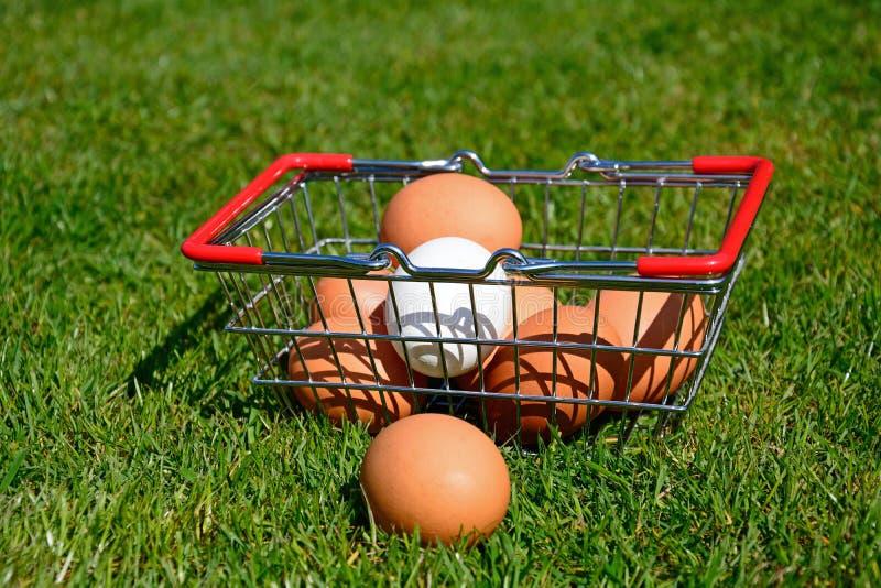Huevos del pollo en una cesta que hace compras fotos de archivo libres de regalías