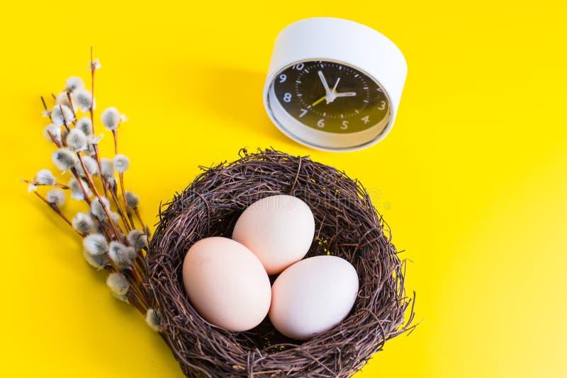 Huevos del pollo en una jerarquía con una ramita del sauce y un despertador en un fondo amarillo fotografía de archivo libre de regalías