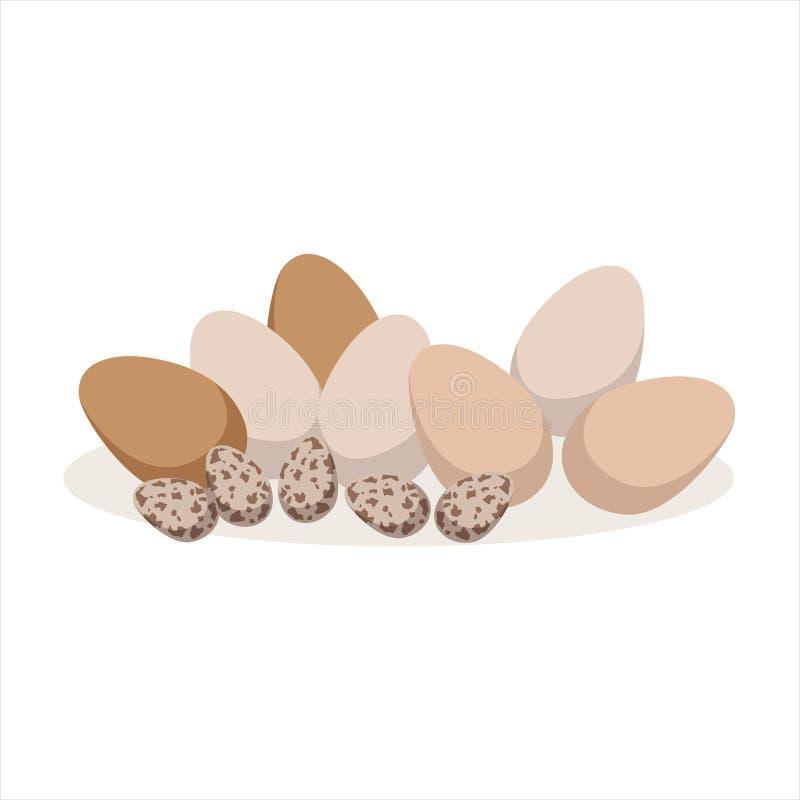 Huevos del pollo y de codornices, ejemplo del vector del ingrediente que cuece libre illustration