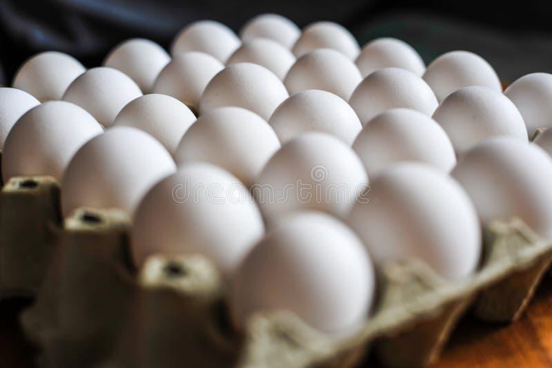 Huevos en el conjunto foto de archivo libre de regalías