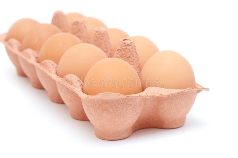 Huevos en el rectángulo de papel foto de archivo