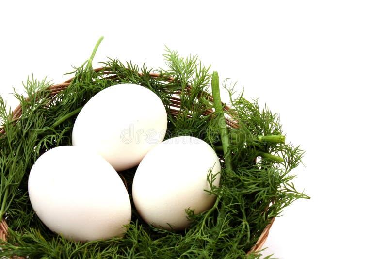 Huevos en jerarquía fotografía de archivo libre de regalías