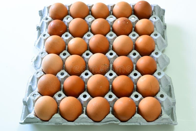 Huevos en la bandeja y el x28; Food& crudo x29; imagen de archivo